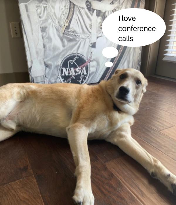 T1V-wfh-WFA-series-1-wfh-dog-barking-during-conference-calls