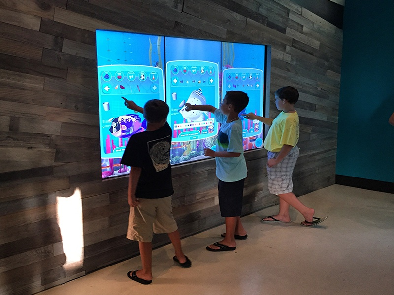 T1V Cowfish Orlando Universal interactive touchscreen Wall Game
